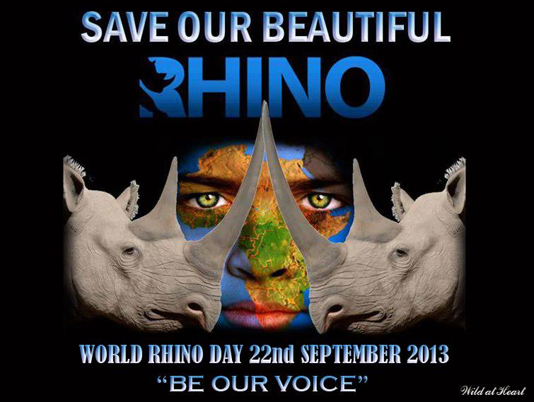 Rhino Day 22 Sept 2013